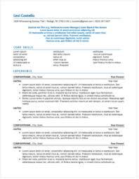 fake resume example fake resume example