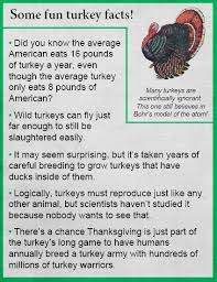 science for thanksgiving some turkey facts funnies