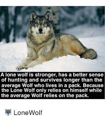 Lone Wolf Meme - a lone wolf is stronger has a better sense of hunting and survives