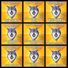 Meme Courage Wolf - courage wolf meme wolf best of the funny meme
