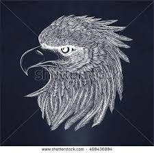 eagle head vector download free vector art stock graphics u0026 images
