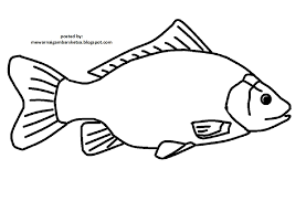 mewarnai gambar mewarnai gambar sketsa hewan ikan 10