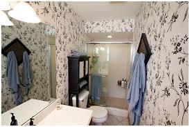 4ft Bathtubs 4 Ft Tub Shower Combo Cheap Vs Steep Bathtubs Bathroom Design