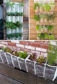 Garden Pots Ideas Diy Garden Homes