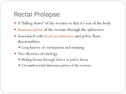 Perineal Dissection Of Synchronous Abdominoperineal Ppt Rectal Prolapse Powerpoint Presentation Id 1750345
