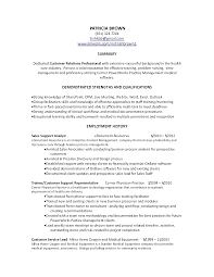 Resume Career Summary Example by Customer Service Summary For Resume Objective Template Online