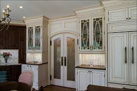 Kitchen Cabinet Doors With Glass Panels Kitchen Glass Curio Cabinet Glass Panels For Cabinet Doors Glass