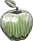 ink sketch of an apple with white fill stock vector art 667390858