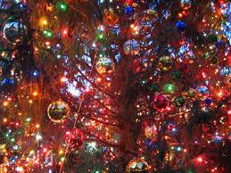 blog above ground tree service