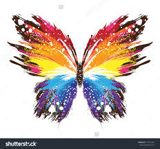 50 stocks at butterfly pics group