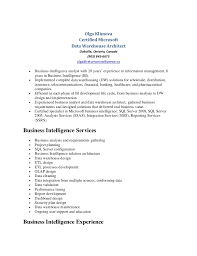 Warehouse Jobs Resume by Olga Klimova Data Warehouse Resume