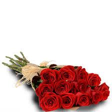 dozen roses detail