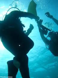 padi diving and instructor development idc around thailand