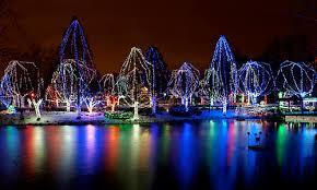 columbus zoo christmas lights where to see the best christmas light displays in columbus ohio