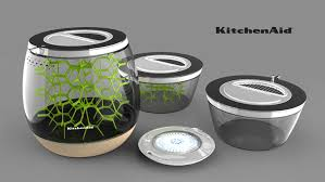 the lepsis is a terrarium for growing edible bugs at home