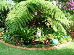 23 best tropical landscape ideas images on pinterest landscaping