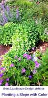 Backyard Ground Cover Options How To Landscape With Groundcover Ground Covering Lawn And Gardens