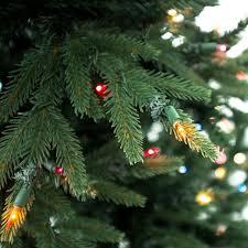 stein u0027s garden u0026 home neuman tree norway fir 7 5 ft w colored