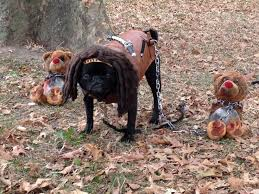 Walking Dead Halloween Costume 25 Michonne Costume Ideas Katana