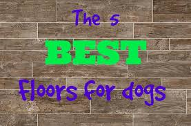 what s the best flooring for dogs flooringinc