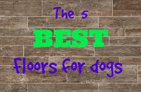 Laminate Flooring And Dogs Durable Wood Flooring Pets Flooring Designs