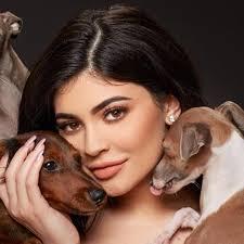 pets news tips u0026 guides glamour kylie jenner u0027s dogs on instagram popsugar pets