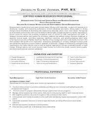 exles of hr resumes best ideas of hr resume templates human resource sle resume