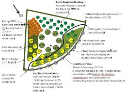 Fruit Tree Garden Layout Orchard Planting Map