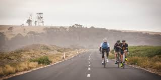 share the damn road cycling jersey bicycling pinterest road roadtripping tasmania cyclingtips