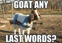 Billy Goat Meme - fancy billy goat meme pin reserved billy goat polymer clay