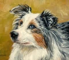 australian shepherd 2015 calendar australian shepherd archives national purebred dog day