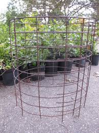 Tomatoes Trellis Tomato Cages Stakes Or Trellises Which Is Best For Supporting