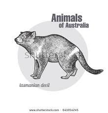 sketch cat hand drawn illustration stock vector 399167971