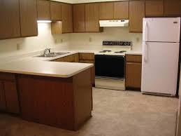 Kitchen Room  Apartment Picture Kitchen Layout Planner Kitchen - Kitchen cabinet apartment