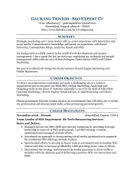 Sample Resume Lpn by Seo Consultant Resume Resume For Your Job Application