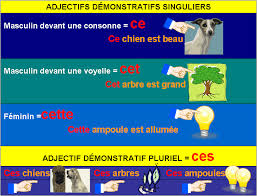 demonstrative adjectives french