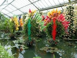 Royal Botanic Gardens Kew Richmond Surrey Tw9 3ab The Orchid Festival At Kew Gardens In Decor To Adore
