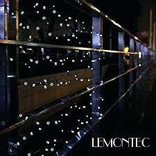 Patio String Lights Lowes Solar Landscape Lights Lowes Solar Patio String Lights Lowes