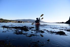 meet the environmentally conscious teens cleaning up the pebble