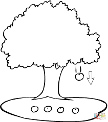 newton u0027s law of universal gravitation coloring page free