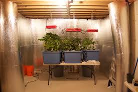 basement lighting hydroponics home design inspirations