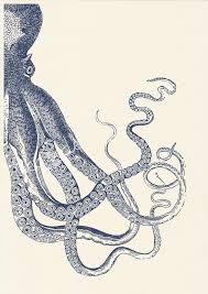 The 25 Best Anchor Print - charming ideas octopus pictures to print best 25 on pinterest