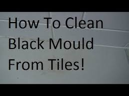 how to clean black mold mould from bathroom tiles youtube