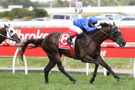 galloper melbourne cup 2016 unlikely for godolphin galloper