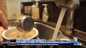 Honest Kitchen Dog Food Reviews by Channel 6 San Diego News Reviews The Honest Kitchen Youtube