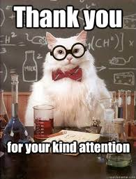 Meme Thank You - thank you for your cat meme cat planet cat planet