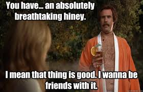Ron Burgundy Memes - you have an absolutely breathtaking hiney i mean that thing is
