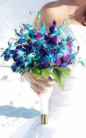 blue dendrobium orchids dendrobium orchid bridal bouquet