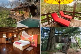 Real Treehouse Sleep Like A Monkey Nine Highflying Tree House Hotels Photos