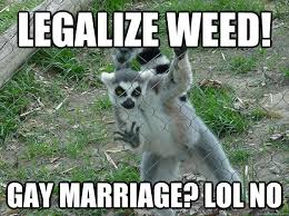 Legalize Weed Meme - legalize weed gay marriage lol no libertarian lemur quickmeme